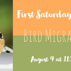 Things to do in Annapolis-Severna Park, MD for Kids: First Saturday Stories, Robinson Nature Center