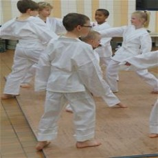 Kids Karate Program (Ages 5-11)