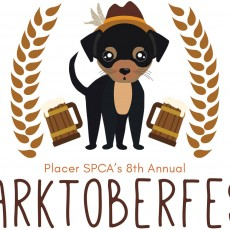 Things to do in Roseville, CA for Kids: Barktoberfest 2018, Placer SPCA