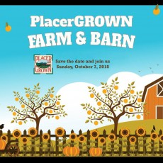 Things to do in Roseville, CA for Kids: PlacerGROWN Farm and Barn Tour - 11 am to 4 pm, Placer Grown