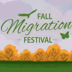 Fall Migration Festival 2018
