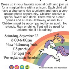 Things to do in Clarkston-Waterford Township, MI: Unicorn Utopia Party