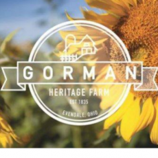 Things to do in Mason-Westchester, OH for Kids: Sunflower Festival, Gorman Heritage Farm
