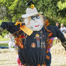 Things to do in Myrtle Beach, SC for Kids: HARVEST HOME FESTIVAL, Brookgreen Gardens