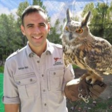 Cape May Fall Festival & Nature Nick Shows *Hours Vary*