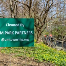 Upper Merion Township Stream Cleanup