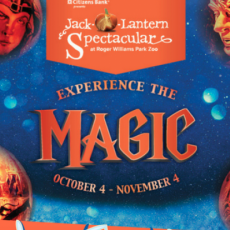 Things to do in Brookline-Norwood, MA for Kids: Jack-O-Lantern Spectacular, Roger Williams Park Zoo