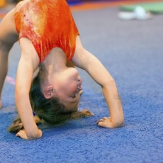Things to do in Phoenix North, AZ for Kids: FREE Tot Tumbling Class!, FX Gymnastics & Cheer