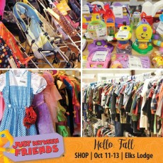 Things to do in Columbia, MO: Just Between Friends Fall Sale