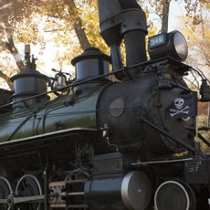 Things to do in Lakewood, CO for Kids: Trick or Treat Train, Colorado Railroad Museum