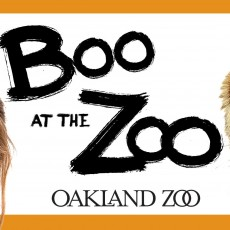 Things to do in Walnut Creek-Diablo, CA for Kids: Boo at the Zoo, Oakland Zoo