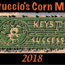 Things to do in Tempe-Mesa, AZ for Kids: Corn Maze & Fall Festival – 2018, Vertuccio Farms
