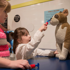 Things to do in Cincinnati Eastside, OH: Pet Academy at Museum Center