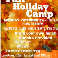 Things to do in Rock Hill, SC for Kids: Fall Holiday Camp, Next Level Gymnastics Academy