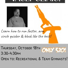 Things to do in Rock Hill, SC for Kids: Vault Clinic with Coach Bruce, Next Level Gymnastics Academy