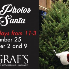 Things to do in Akron, OH for Kids: Free Photos with Santa, Graf's Garden Shop, Landscape & Farm Market
