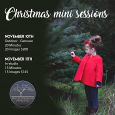 Things to do in Waukesha-Lake Country, WI for Kids: Christmas Mini Sessions (Studio), Molly Johnson Photography