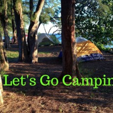 Things to do in Fort Myers, FL for Kids: Family Camp Out at Jaycee Park, Jaycee Park
