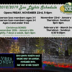 Things to do in Anchorage, AK for Kids: Zoo Lights, The Alaska Zoo