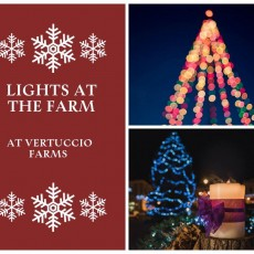 Things to do in Chandler, AZ for Kids: Lights at the Farm, Vertuccio Farms