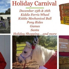 Things to do in Chandler, AZ for Kids: Charming Ponies Holiday Carnival, Charming Pony Parties