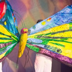 Things to do in San Francisco South, CA for Kids: The Very Hungry Caterpillar Christmas Show, Children's Creativity Museum