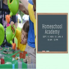 Homeschool Academy at Spring Lake K-12