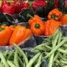 Things to do in Fort Bend Central, TX: Visit the New Farmers Market