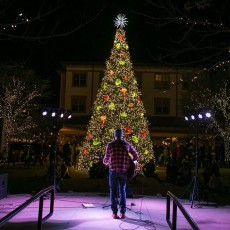 Things to do in Flower Mound-Lewisville, TX for Kids: Second Annual Lakeside Holiday Event, Lakeside DFW