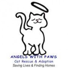Saving Lives and reduce pet overpopulation