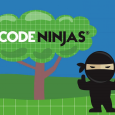 Things to do in Bloomington, MN for Kids: Holiday Hack-A-Thon, Code Ninjas - Edina