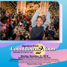 Things to do in Eastern Main Line, PA for Kids: New Year's Eve Countdown 2 Noon Event, Please Touch Museum