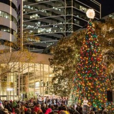 Things to do in Richmond South, VA for Kids: The Grand Illumination of James Center, James Center