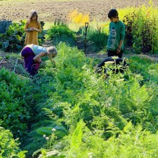 Things to do in Beaverton, OR for Kids: Open House, Swallowtail Waldorf School and Farm