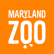 Things to do in Baltimore North, MD for Kids: Visit the Maryland Zoo, The Maryland Zoo in Baltimore