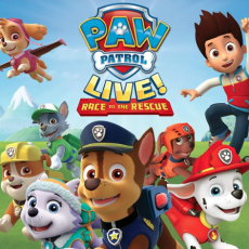 Things to do in Belmont-Newton, MA for Kids: PAW Patrol Live! Race to the Rescue ~ Wang Theatre, Boch Center