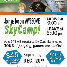 Things to do in Columbia, MO for Kids: Sky Camp, Sky Zone Columbia