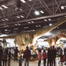 Doylestown-Horsham, PA Events for Kids: Jurassic Quest