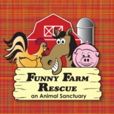 Things to do in Cape May County, NJ: Funny Farm Rescue Visits the Mall