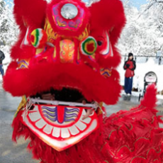 Things to do in Wellesley-Framingham, MA for Kids: Lion Dancers, Dover Town Library