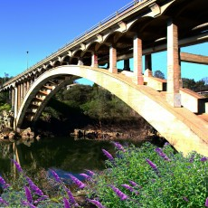 Things to do in Folsom-EDH, CA for Kids: Rainbow Bridge Centennial Celebration, City of Folsom
