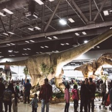 Things to do in Fort Worth Southwest, TX for Kids: Jurassic Quest, Fair Park Coliseum