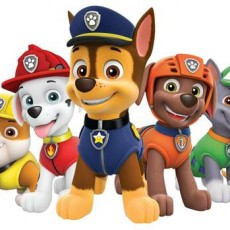 New Haven, CT Events for Kids: Paw Patrol Live!
