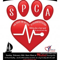 Things to do in Annapolis-Severna Park, MD for Kids: Hearts & Hounds Mall Crawl, SPCA of Anne Arundel County